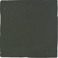 Wandtegel Revoir Paris atelier vert emeraude glans 10x10 - Thuis in Tegels